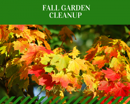 Fall-Garden-Cleanup