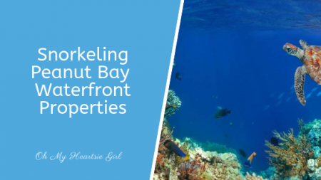 Snorkeling-Peanut-Bay-Waterfront-Properties