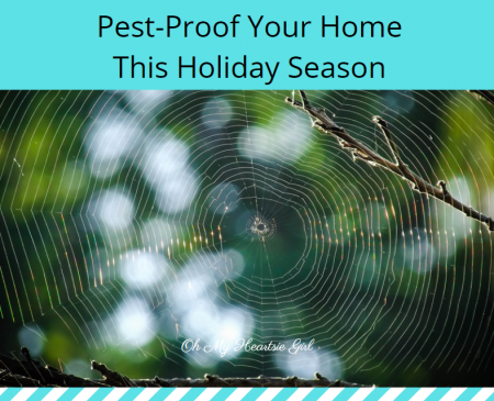 Pest-Proof-Your-Home-This-Holiday-Season
