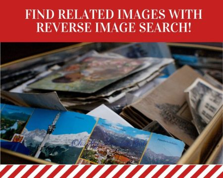 Find-Related-Images-with-Reverse-Image-Search