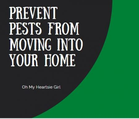 Prevent-Pests-From-Coming-Into-Your-Home