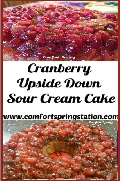 Comfort-Spring-Cranberry-Upside-Down-Sour-Cream-Cake.