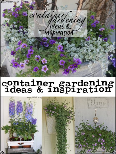 Masterpieces-of-My-Life-Container-Gardening-with-many-containers