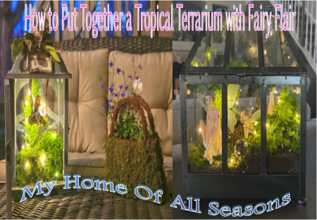 My-Home-Of-All-Seasons-How-to-Put-Together-a-Tropical-Terrarium-with-Fairy-Flair