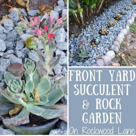 Front-Yard-Rock-and-Succulent-Garden.