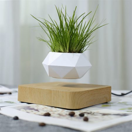 Spruce-Up-the-Desk-With-Greenery