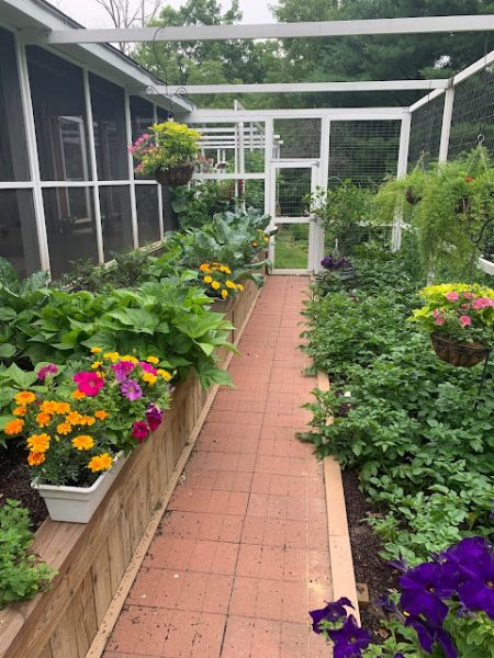 July-Blooms-and-A-Peek-Into-Amys-Vegetable-Garden.j
